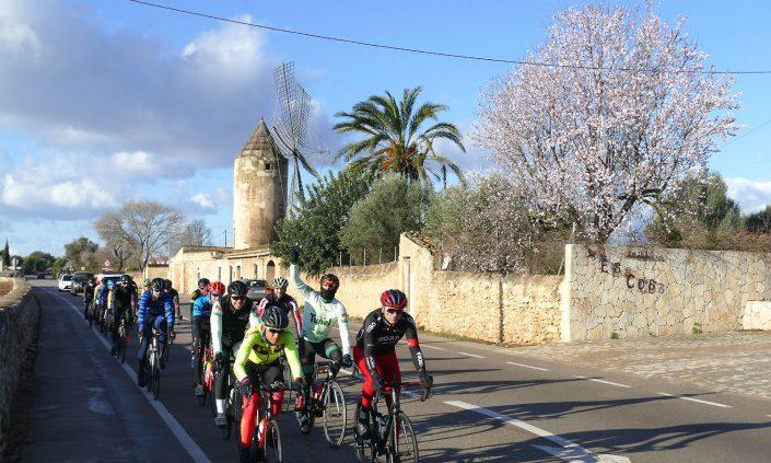 Mallorca-Binissalem-Rennfahrer