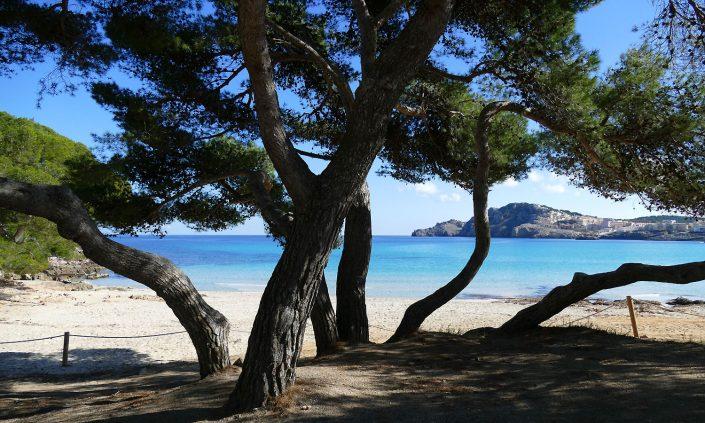 Mallorca-Cala-Agulla